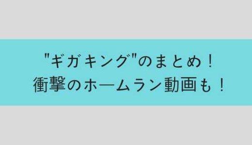 【動画有】ビヨンドマックス ギガキングついに発売!驚愕の性能で飛びすぎ!